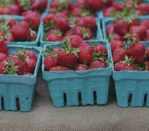 Why a Strawberry  Festival in Crawfordsville?